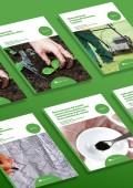 Certificado de Instalación y mantenimiento de jardines y zonas verdes